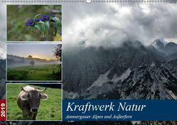 Kraftwerk Natur (Wandkalender 2019 DIN A2 quer) von Wittmann,  Steffen