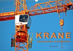 Krane – bärenstarke Arbeitstiere (Wandkalender 2019 DIN A3 quer) von Roder,  Peter