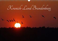 Kranich-Land Brandenburg (Wandkalender 2019 DIN A3 quer) von Konieczka,  Klaus