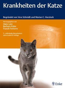 Krankheiten der Katze von Forterre,  Franck, Kohn,  Barbara, Lutz,  Hans