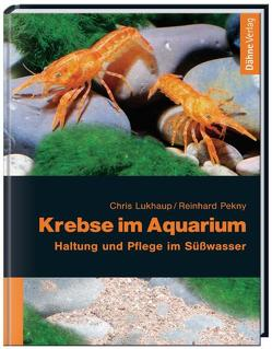 Krebse im Aquarium von Lukhaup,  Chris, Pekny,  Reinhard