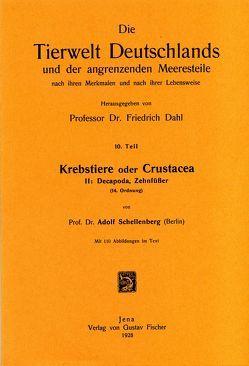 Krebstiere oder Crustacea. Teil II: Decapoda. Zehnfüsser von Schellenberg,  Adolf