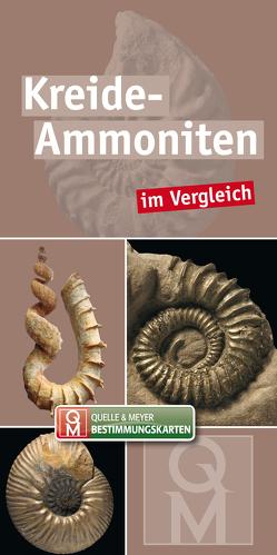 Kreide-Ammoniten von Quelle & Meyer Verlag