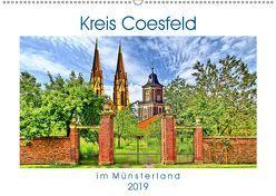 Kreis Coesfeld im Münsterland – Stadt Land Fluß (Wandkalender 2019 DIN A2 quer) von Michalzik,  Paul