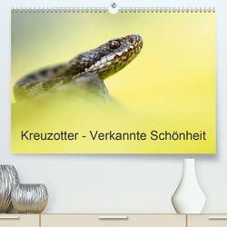 Kreuzotter – Verkannte Schönheit (Premium, hochwertiger DIN A2 Wandkalender 2020, Kunstdruck in Hochglanz) von Marth,  Thomas