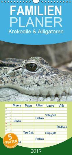 Krokodile & Alligatoren – Familienplaner hoch (Wandkalender 2019 , 21 cm x 45 cm, hoch) von Stanzer,  Elisabeth