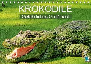 Krokodile: Gefährliches Großmaul (Tischkalender 2018 DIN A5 quer) von CALVENDO,  k.A.