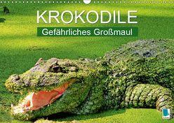 Krokodile: Gefährliches Großmaul (Wandkalender 2019 DIN A3 quer) von CALVENDO