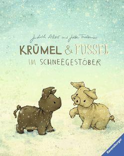Krümel und Fussel – Im Schneegestöber von Allert,  Judith, Tourlonias,  Joelle