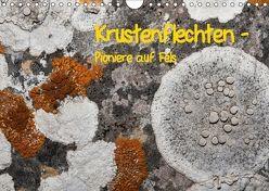 Krustenflechten – Pioniere auf Fels (Wandkalender 2018 DIN A4 quer) von focusnatura.at,  k.A.