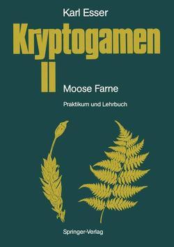Kryptogamen II Moose · Farne von Esser,  Karl, Kämper,  J., Rathke,  H.-J.
