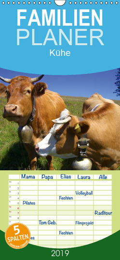 Kühe – Familienplaner hoch (Wandkalender 2019 , 21 cm x 45 cm, hoch) von Stanzer,  Elisabeth