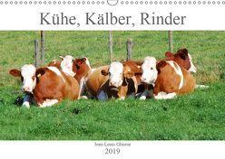Kühe, Kälber, Rinder (Wandkalender 2019 DIN A3 quer) von Glineur,  Jean-Louis