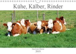 Kühe, Kälber, Rinder (Wandkalender 2019 DIN A4 quer) von Glineur,  Jean-Louis