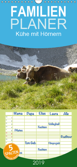 Kühe mit Hörnern – Familienplaner hoch (Wandkalender 2019 , 21 cm x 45 cm, hoch) von Goldscheider,  Stefanie