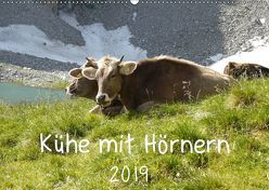 Kühe mit Hörnern (Wandkalender 2019 DIN A2 quer) von Goldscheider,  Stefanie