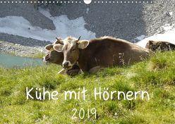 Kühe mit Hörnern (Wandkalender 2019 DIN A3 quer) von Goldscheider,  Stefanie