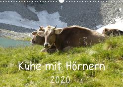 Kühe mit Hörnern (Wandkalender 2020 DIN A3 quer) von Goldscheider,  Stefanie
