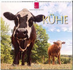 Kühe von Haese,  Ute, Prawitt,  Torsten