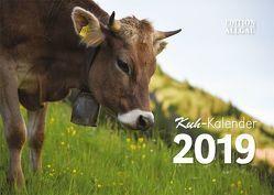 Kuh-Kalender 2019 von Allgäulichtbild, Neufert,  Denise, Wandel,  Juliane, Zapf,  Benjamin