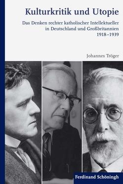 Kulturkritik und Utopie von Tröger,  Johannes