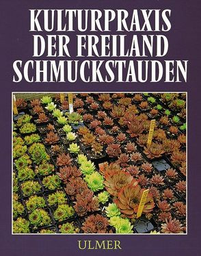 Kulturpraxis der Freiland-Schmuckstauden von Feßler,  Alfred, Köhlein,  Fritz