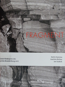 Kunst-Förderpreis des Landes Brandenburg 2017 von Kremeier,  Ulrike, Sperling,  Jörg
