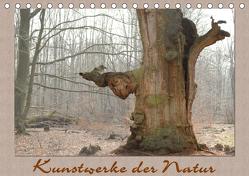 Kunstwerke der Natur (Tischkalender 2019 DIN A5 quer) von Hubner,  Katharina