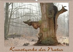 Kunstwerke der Natur (Wandkalender 2018 DIN A2 quer) von Hubner,  Katharina