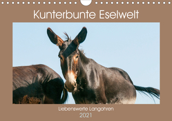 Kunterbunte Eselwelt – Liebenswerte Langohren (Wandkalender 2021 DIN A4 quer) von Bölts,  Meike