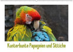 Kunterbunte Papageien und Sittiche (Wandkalender 2019 DIN A2 quer)