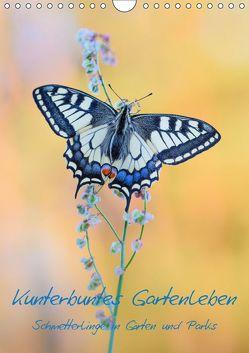 Kunterbuntes Gartenleben – Schmetterlinge in Gärten und Parks (Wandkalender 2019 DIN A4 hoch) von Marth,  Thomas