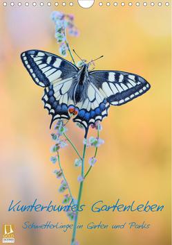 Kunterbuntes Gartenleben – Schmetterlinge in Gärten und Parks (Wandkalender 2020 DIN A4 hoch) von Marth,  Thomas