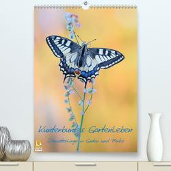 Kunterbuntes Gartenleben – Schmetterlinge in Gärten und Parks (Premium, hochwertiger DIN A2 Wandkalender 2020, Kunstdruck in Hochglanz) von Marth,  Thomas