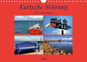Kurische Nehrung – ein Geheimtipp (Wandkalender 2020 DIN A4 quer) von Thauwald,  Pia