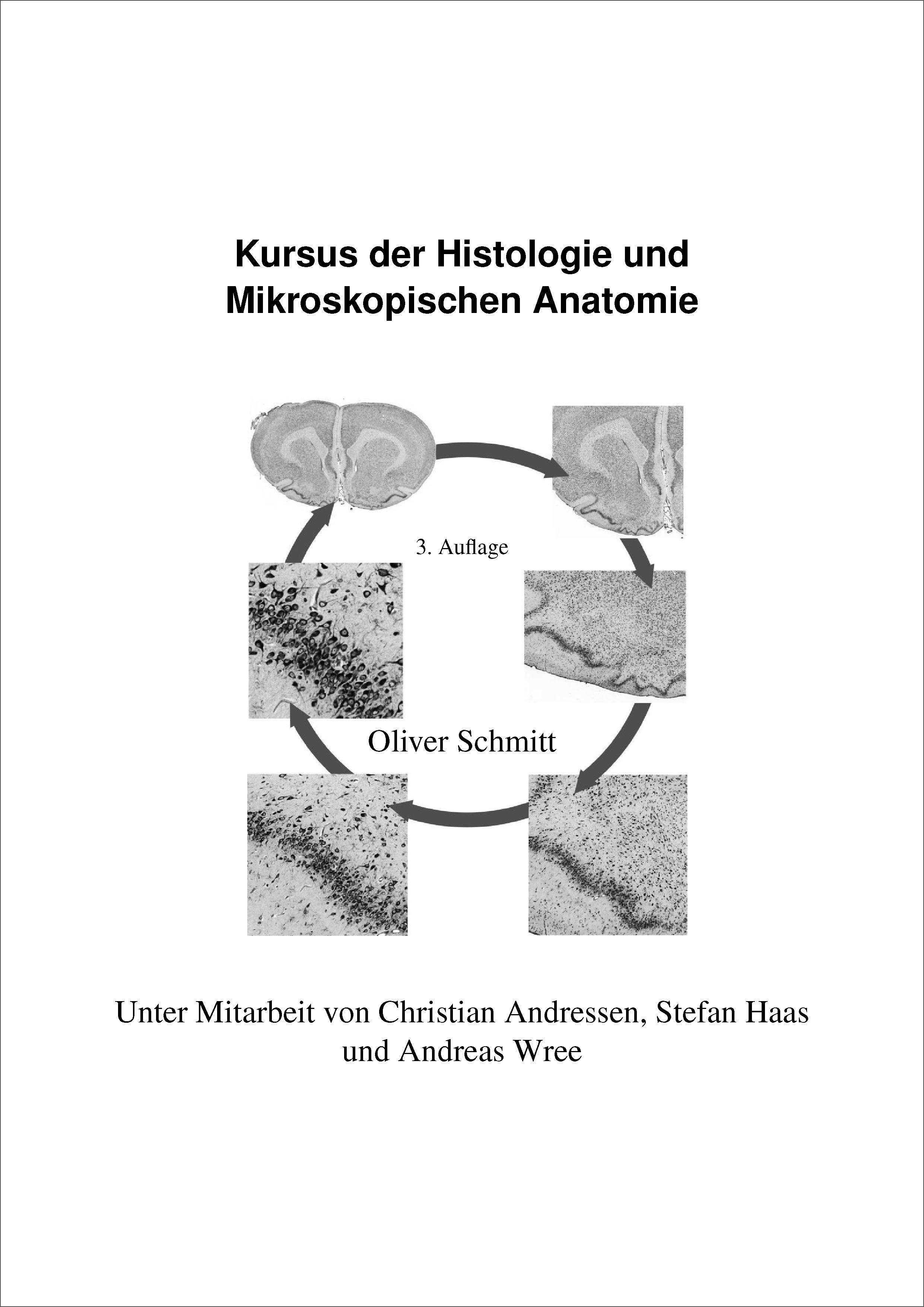 Groß Grundbegriffe Der Anatomie Und Physiologie Des Menschlichen ...