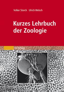 Kurzes Lehrbuch der Zoologie von Storch,  Volker, Welsch,  Ulrich