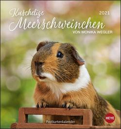 Kuschelige Meerschweinchen Postkartenkalender Kalender 2021 von Heye, Wegler,  Monika