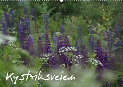 Kystriksveien (Wandkalender 2021 DIN A2 quer) von und Finn Drees,  Andreas, www.drees.dk