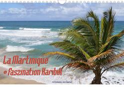 La Martinique – Faszination Karibik (Wandkalender 2020 DIN A4 quer) von Haafke,  Udo