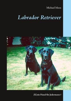 Labrador Retriever von Moos,  Michael