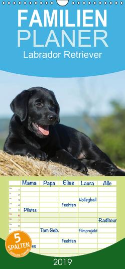 Labrador Retriever 2019 – Familienplaner hoch (Wandkalender 2019 , 21 cm x 45 cm, hoch) von Starick,  Sigrid