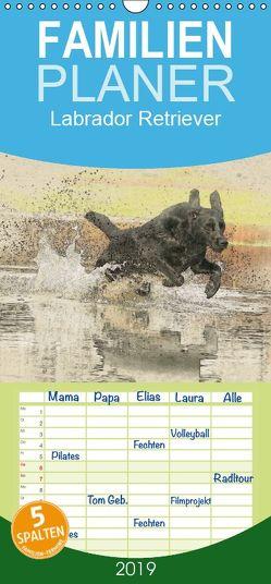Labrador Retriever 2019 – Familienplaner hoch (Wandkalender 2019 , 21 cm x 45 cm, hoch) von Redecker,  Andrea