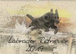 Labrador Retriever 2019 (Wandkalender 2019 DIN A2 quer) von Redecker,  Andrea