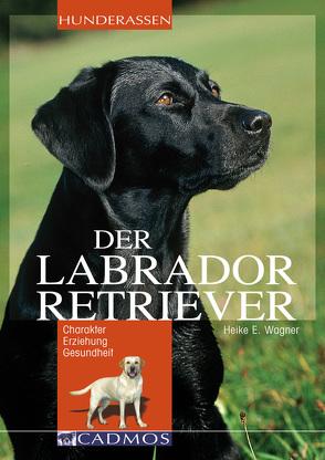 Labrador Retriever von Wagner,  Heike E