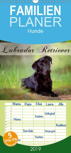 Labrador Retriever – Familienplaner hoch (Wandkalender 2019 , 21 cm x 45 cm, hoch) von Noack,  Nicole