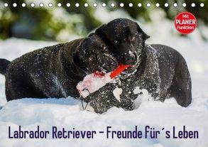 Labrador Retriever – Freunde für´s Leben (Tischkalender 2018 DIN A5 quer) von Starick,  Sigrid