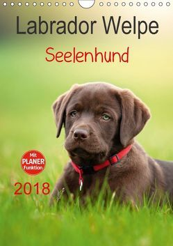 Labrador Welpe – Seelenhund (Wandkalender 2018 DIN A4 hoch) von Schiller,  Petra