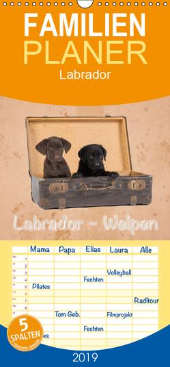 Labrador – Welpen – Familienplaner hoch (Wandkalender 2019 , 21 cm x 45 cm, hoch) von Eschrich -HeschFoto,  Heiko
