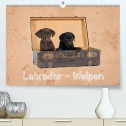 Labrador – Welpen (Premium, hochwertiger DIN A2 Wandkalender 2021, Kunstdruck in Hochglanz) von Eschrich -HeschFoto,  Heiko